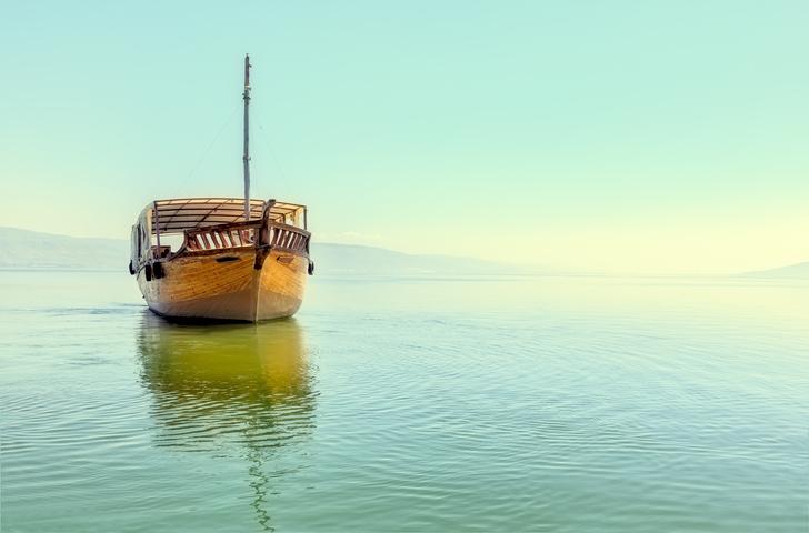 """Rejse I Israel: Galilæa Og Jerusalem """"Livsfornyelse"""""""